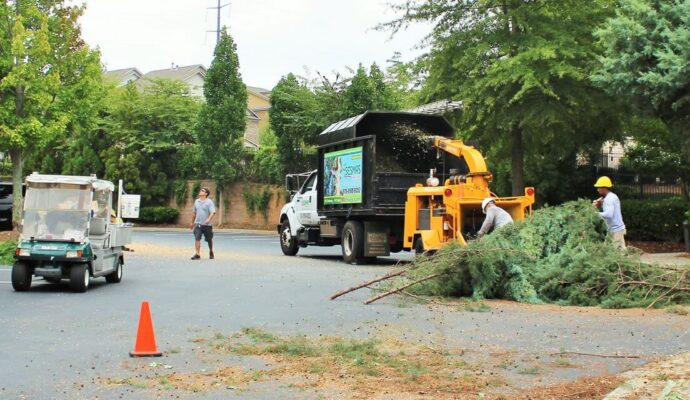 Commercial Tree Services-West Palm Beach Tree Trimming and Tree Removal Services-We Offer Tree Trimming Services, Tree Removal, Tree Pruning, Tree Cutting, Residential and Commercial Tree Trimming Services, Storm Damage, Emergency Tree Removal, Land Clearing, Tree Companies, Tree Care Service, Stump Grinding, and we're the Best Tree Trimming Company Near You Guaranteed!