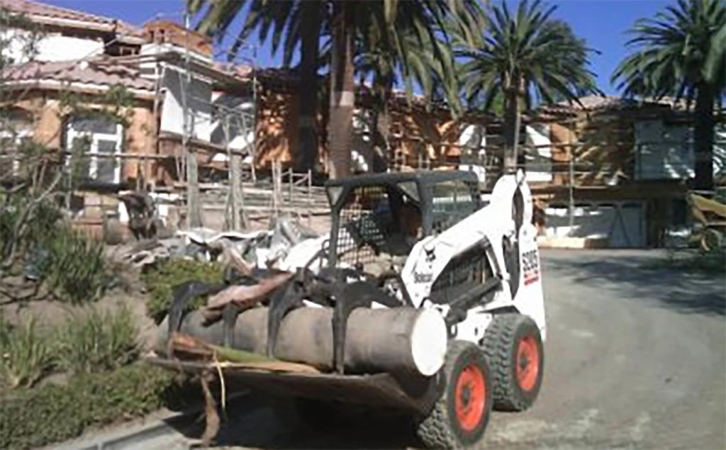 Palm Tree Removal-West Palm Beach Tree Trimming and Tree Removal Services-We Offer Tree Trimming Services, Tree Removal, Tree Pruning, Tree Cutting, Residential and Commercial Tree Trimming Services, Storm Damage, Emergency Tree Removal, Land Clearing, Tree Companies, Tree Care Service, Stump Grinding, and we're the Best Tree Trimming Company Near You Guaranteed!