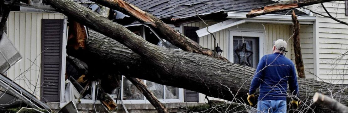 Storm Damage-West Palm Beach Tree Trimming and Tree Removal Services-We Offer Tree Trimming Services, Tree Removal, Tree Pruning, Tree Cutting, Residential and Commercial Tree Trimming Services, Storm Damage, Emergency Tree Removal, Land Clearing, Tree Companies, Tree Care Service, Stump Grinding, and we're the Best Tree Trimming Company Near You Guaranteed!