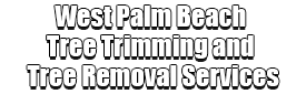 West Palm Beach Tree Trimming and Tree Removal Services Logo-We Offer Tree Trimming Services, Tree Removal, Tree Pruning, Tree Cutting, Residential and Commercial Tree Trimming Services, Storm Damage, Emergency Tree Removal, Land Clearing, Tree Companies, Tree Care Service, Stump Grinding, and we're the Best Tree Trimming Company Near You Guaranteed!